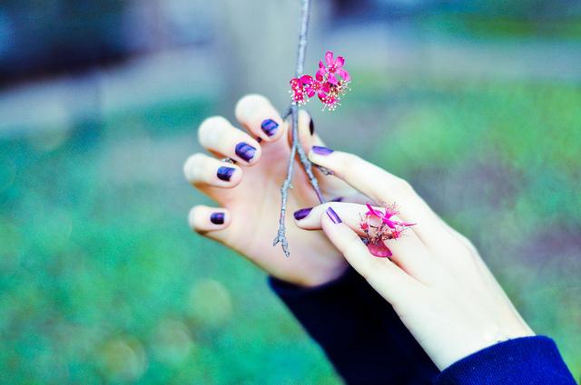 بهار دستان تو بود